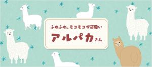 animal_alpaca_01